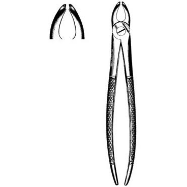 Sklar Dental Mead Extracting Forceps #2
